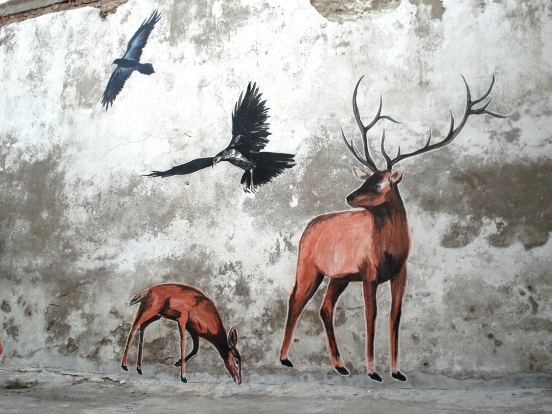 suriani street art turkey