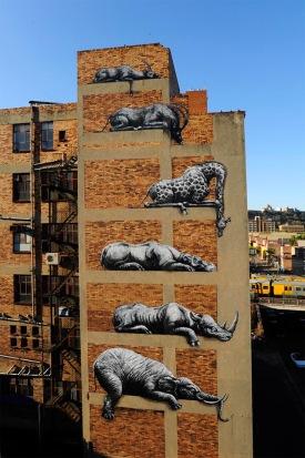 roa-street-art-africa-mural