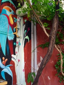 thiago-mazza-street-art-birds-lesbos